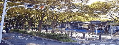 杉並児童交通公園